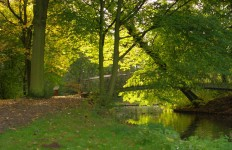Gemeentepark met hofgracht